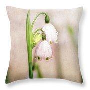 Spring Duet Throw Pillow