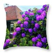 Spring  Dutch Garden  Throw Pillow