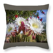 Spring Easter Cactus Blooms 789 Throw Pillow