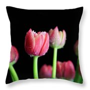 Spring Equinox Throw Pillow by Tracy Hall