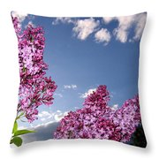 Spring Evening Throw Pillow
