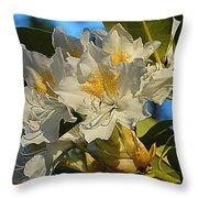 Spring Exuberance  Throw Pillow