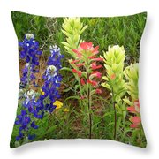 Spring Eye Candy Throw Pillow