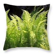 Spring Fern Fronds Throw Pillow