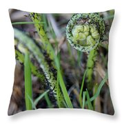 Spring Ferns Throw Pillow