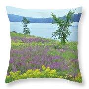 Spring Fever Throw Pillow