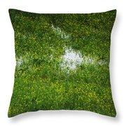Spring Field Memphis Throw Pillow