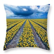 Spring Fields Throw Pillow