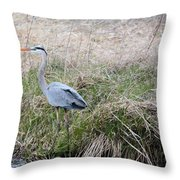 Spring Fishing Throw Pillow