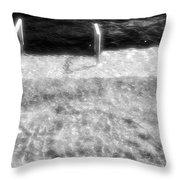 Spring Flood Bw Throw Pillow
