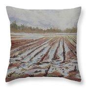 Spring Flood Throw Pillow