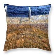 Spring Flood  Throw Pillow