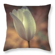 Spring Flower 4 Throw Pillow
