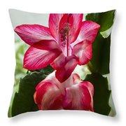Spring Flower 7 Throw Pillow