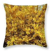 Spring Flower Throw Pillow