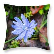 Spring Flower Throw Pillow
