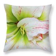 Spring Flower Macro Throw Pillow