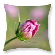 Spring Flower Savannah, Ga Throw Pillow