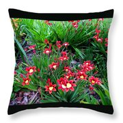Spring Flowers Throw Pillow by Joyce Woodhouse