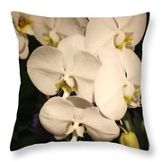 Spring Flowers No.13 Throw Pillow
