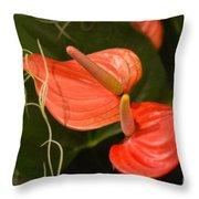 Spring Flowers No.8 Throw Pillow
