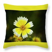 Spring Flowers Shell Road Throw Pillow