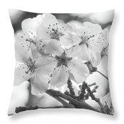 Spring Flowers - White Throw Pillow