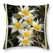 Spring Flowers With Green Border Throw Pillow