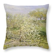 Spring. Fruit Trees In Bloom Throw Pillow