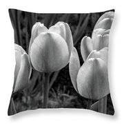 Spring Garden - Act One 2 Bw Throw Pillow