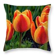 Spring Garden - Act One 2 Throw Pillow