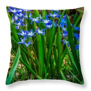 Spring Giggle Throw Pillow