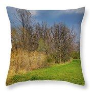Spring Grass Throw Pillow