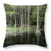 Spring Green In Cypress Swamp Throw Pillow