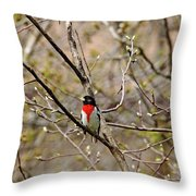 Spring Grosbeak Throw Pillow
