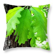 Spring Growth Throw Pillow