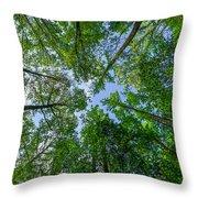 Spring Gums Throw Pillow