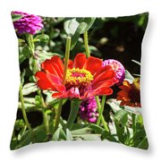 Spring Has Sprung Throw Pillow by Valeria Donaldson
