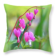 Spring Hearts - Flowers With Vignette 2 Throw Pillow