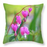 Spring Hearts - Flowers With Vignette Throw Pillow