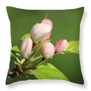 Spring Highlights Throw Pillow