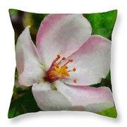 Spring - Id 16235-142747-0642 Throw Pillow