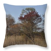 Spring In Bombay Hook Throw Pillow