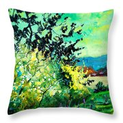 spring in Ciergnon Throw Pillow