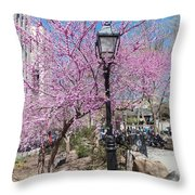 Spring In  Columbus Park 1 Throw Pillow