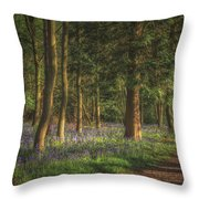 Spring In Haywood No 2 Throw Pillow