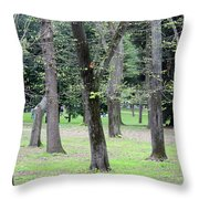 Spring In Rome Throw Pillow
