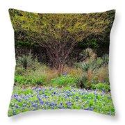 Spring In Texas Throw Pillow