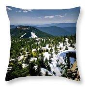 Spring In The Cascades Throw Pillow