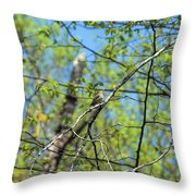 Spring In The Deep Woods Throw Pillow
